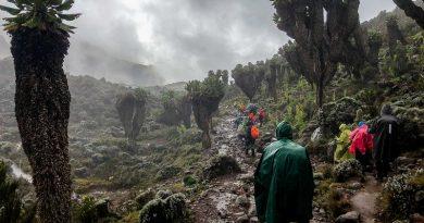 Rainy approach to Mount Kilimanjaro. Best time to climb Kilimanjaro
